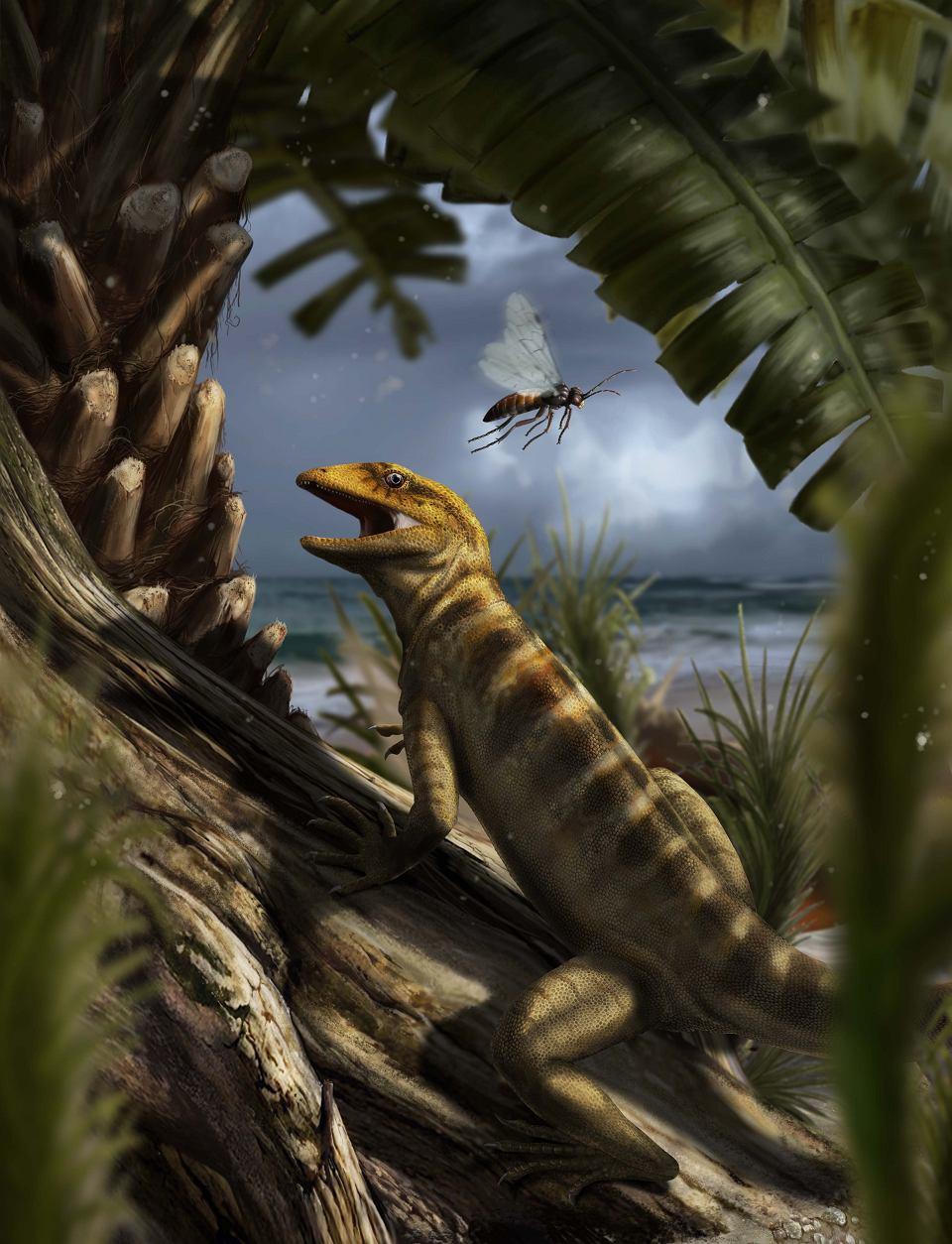 240 mln lat temu. Megachirella wachtleri w rejonie, który dziś leży w północnych Włoszech