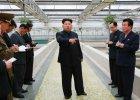 Kim Dzong Un wściekły na zły stan hodowli żółwi. Jej dyrektora prawdopodobnie zastrzelono