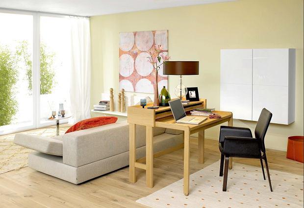 Domowe biuro: praca jest trendy