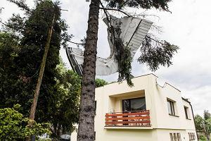 Policja szuka �wiadk�w katastrofy samolotu