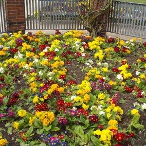 Ogród lokatorski, czyli dzia�kowanie XXI wieku. Tego pozazdroszcz� ci s�siedzi