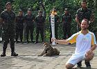 Jaguar mia� by� maskotk� na igrzyska olimpijskie w Rio. Zosta� zastrzelony przez wojsko