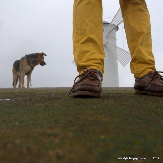 Zdjęcie numer 2 w galerii - Vslv's World: żółty spacer