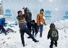 Dzieci uchodźców. Pies dostał paszport, dzieci nie