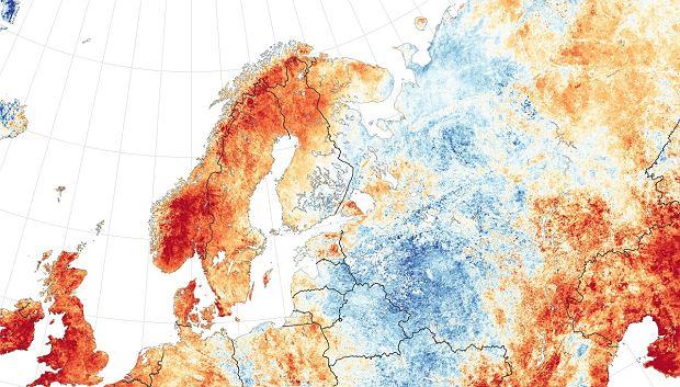 Pogoda na świecie. Anomalie temperatur w Skandynawii (im bardziej czerwony kolor, tym większa różnica od średniej temperatury z poprzednich lat).
