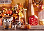 Jesienne dekoracje w home&you