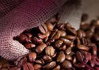 Kawa z rodowodem