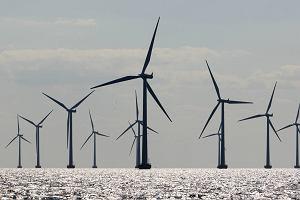 Truj�ca zielona energia