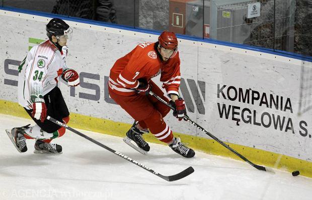 Turniej hokeja na lodzie EIHC w Tychach. Mecz Polska - W�gry (1:2)