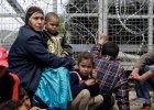 Solidarni z uchodźcami