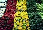 Czym r�ni si� czerwona papryka od zielonej? Nie tylko kolorem