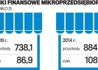 Jakie są najmniejsze firmy w Polsce?