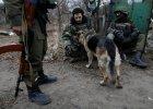 Co knuje Moskwa na Ukrainie?