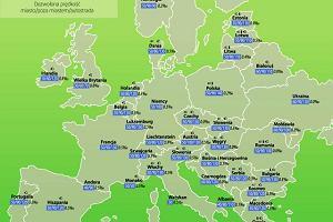 Przepisy drogowe w krajach UE - jak uniknąć mandatu