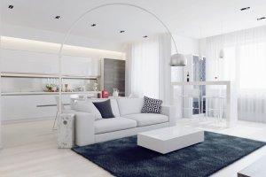 Wn�trza: podmoskiewski apartament