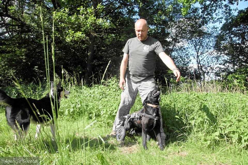 Miron Chmielewski i jego psy
