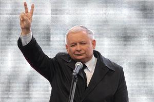 Trzy partie w Sejmie w nowym sonda�u TNS. PiS i ZP z wi�kszo�ci� bezwzgl�dn�
