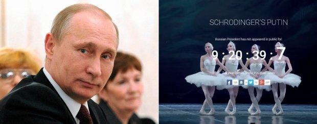 """Gdzie jest Putin? """"W Pjongjangu"""", """"Zneutralizowany, ale �ywy"""", """"To odwr�cenie uwagi od wojny na Ukrainie"""""""