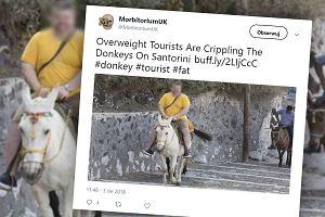 Nowe ograniczenia dla turystów. Ważysz więcej niż 100 kg? W Grecji już nie pojeździsz na osiołku