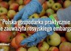 """""""Wiedomosti"""": Embarga nie zaszkodzi�y gospodarce Polski. Jej eksport stale ro�nie, a udzia� w nim Rosji spada"""