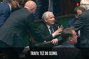 Kaczyński ma nowy fetysz - to biała róża