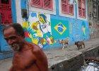 Przed mundialem Brazylią wstrząsają strajki. Domosławski: Faraoniczne wydatki na stadiony. Ludzie są wściekli