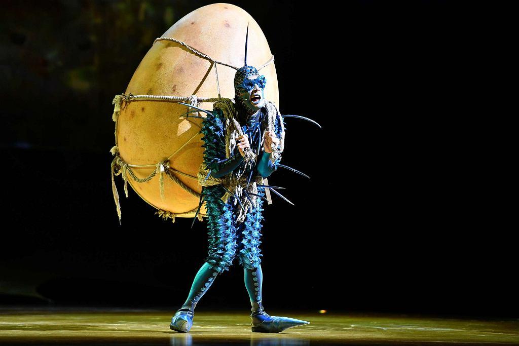 Spektakl 'OVO', Cirque du Soleil / Materiały prasowe Alter Art Show