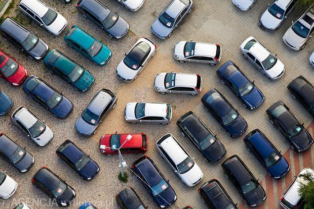 Nowy sposób na biznes - Polacy rejestrują auta dla Ukraińców. Rekordzista ma ich kilka tysięcy
