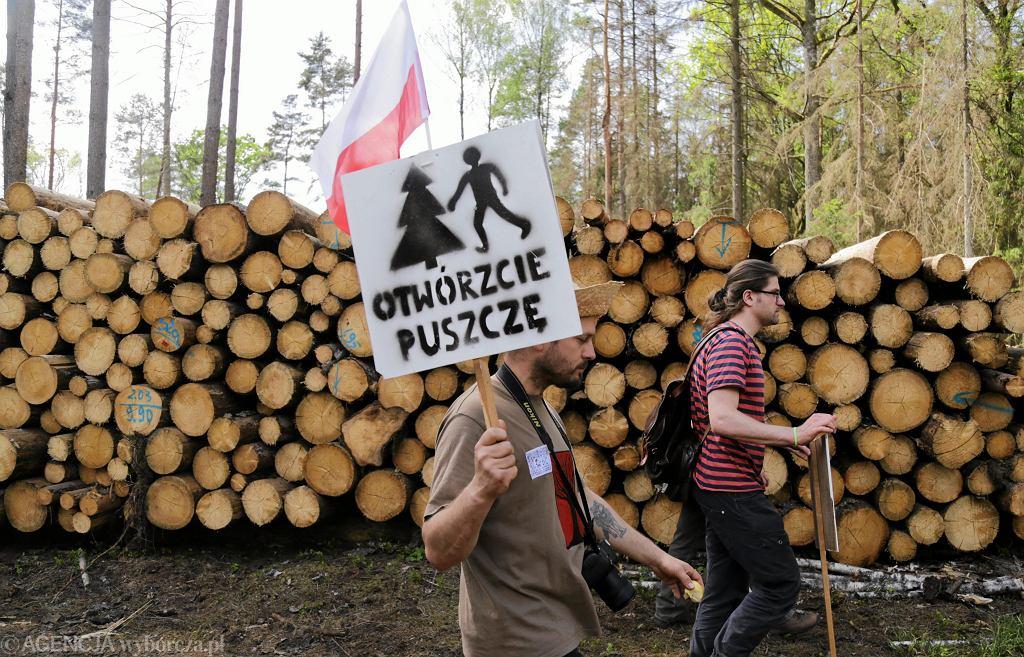 Protesty ws. wycinki w Puszczy Białowieskiej