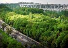Stadion �l�ski b�dzie walczy� o mistrzostwa Europy i �wiata