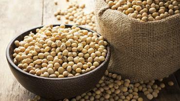 Fitoestrogeny znajdziemy m.in. w produktach sojowych
