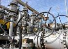 TV Dożd: Norweska ropa jest już tańsza od łososia