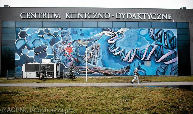 Zdjęcie numer 0 w galerii - Łódzki street art w rankingu najlepszej sztuki ulicznej na świecie