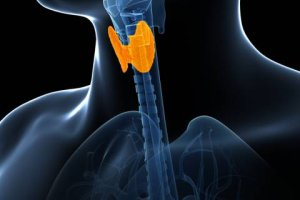 Izotopowe leczenie tarczycy