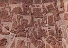 Pierwszy spacer człowieka z psem. Sprzed 8 tys. lat!