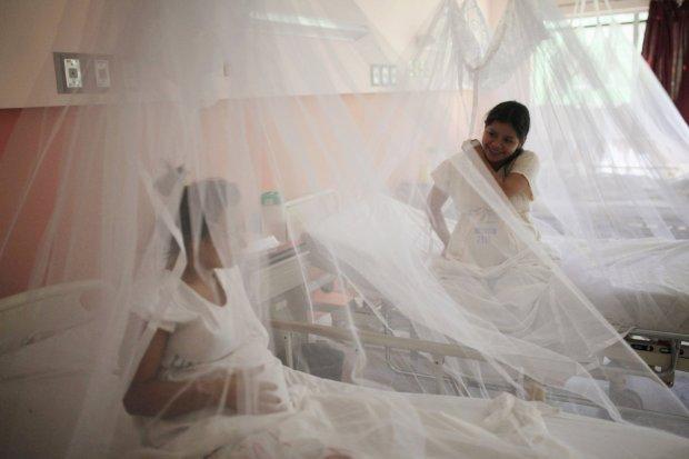Moskitiery mające chronić przed ugryzieniami komarów, przenoszącymi m.in. wirus Zika w jednym ze szpitali w San Salvador.