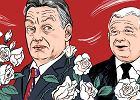 Szczerek: Kaczyński śpiewa w chórze Putina. Polskę czeka w najlepszym razie los Białorusi
