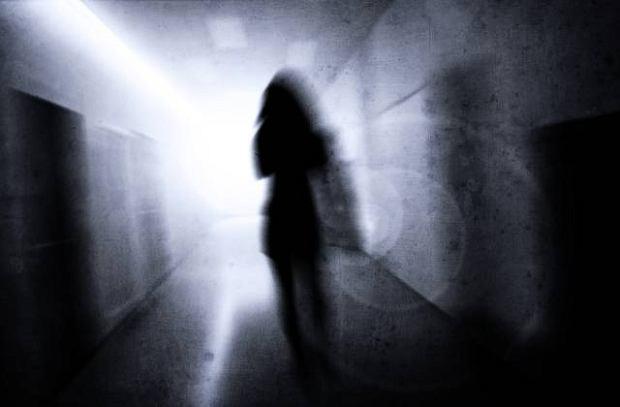 Paranoja (zaburzenie urojeniowe)