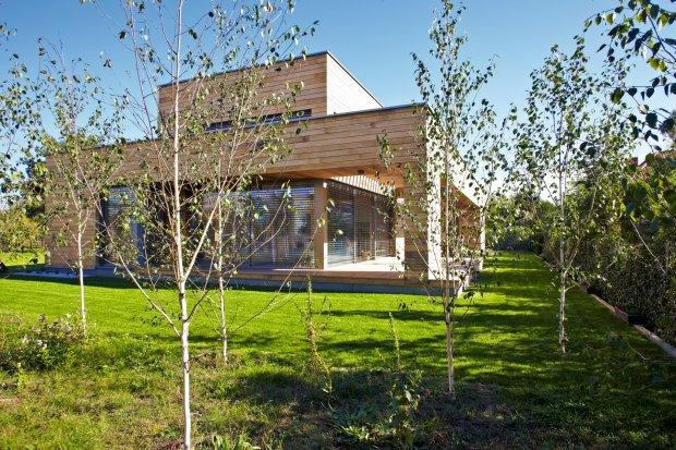Widok domu od strony ogrodu. Minimalistyczną bryłę budynku z czasem przesłoni brzozowy lasek.