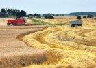 Firmy doradcze wy�udza�y miliony z�otych, pozoruj�c pomoc rolnikom