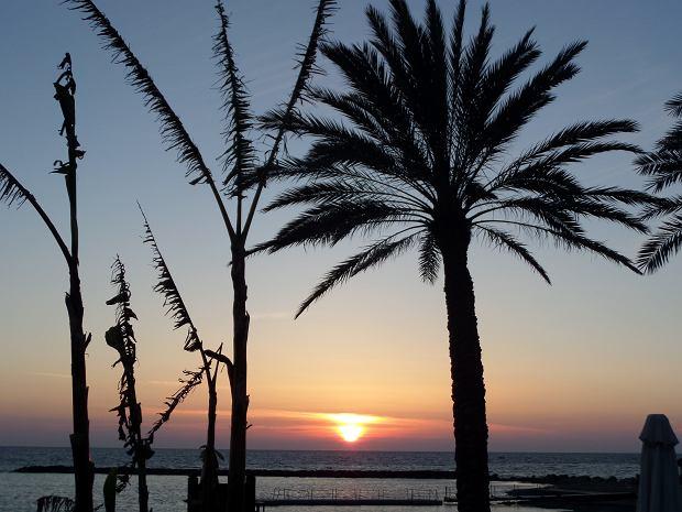 Wakacje na Cyprze - co warto wiedzieć o tej wyspie?