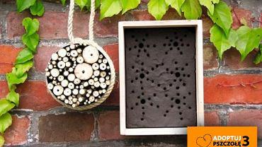 Gniazda dla dzikich pszczół