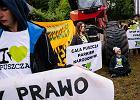 4. blokada wycinki w Puszczy Białowieskiej.