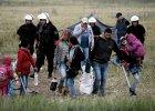 Idomeni musi zniknąć. Grecy rozpoczęli ewakuację obozu uchodźców
