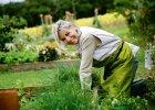 8 powodów dla których warto mieć ogród