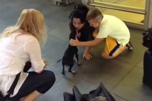 Przygarn�li szczeniaka na wakacjach w Grecji. Dokonali cudu, by m�g� przylecie� do Polski