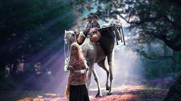 Zwykła, codzienna scena, ale wygląda jak z baśni: kobieta idzie przez las w indyjskim stanie Radżastan