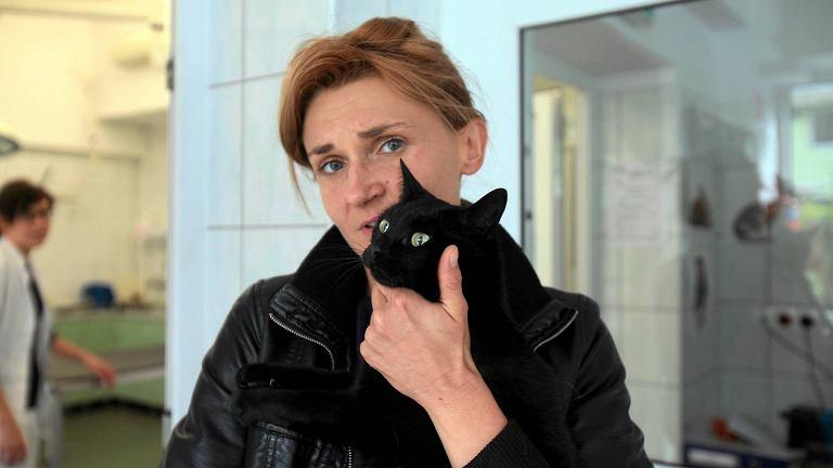 Irena Lipińska z kotem postrzelonym z wiatrówki