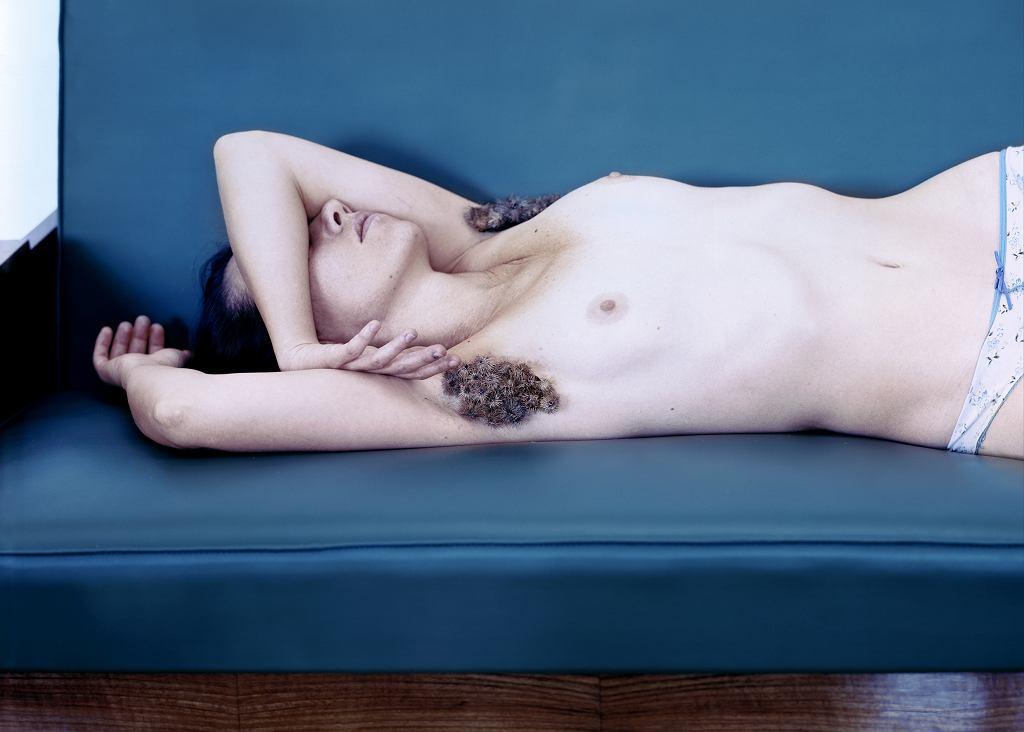 Aneta Grzeszykowska, 'Hair #2', 2009 r. / materiały prasowe