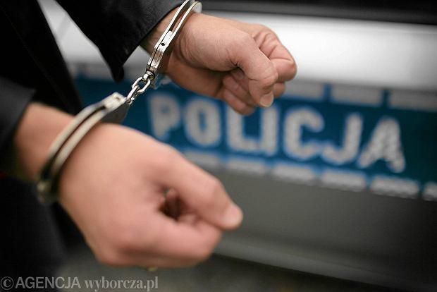 Syn wiceministra sportu zosta� aresztowany. By� cz�onkiem grupy przest�pczej?